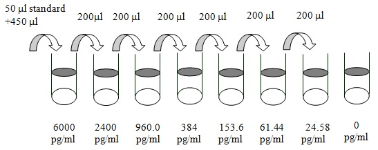 Dilution series diagram with 8 vials
