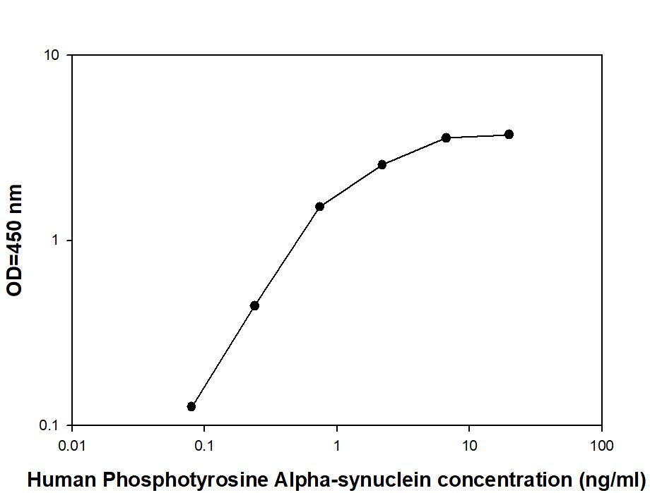 Alpha-synuclein - Positive Control