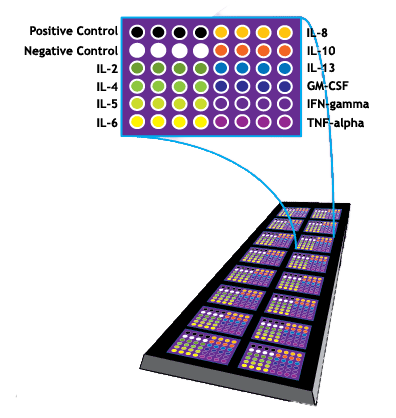Multiplex ELISA Array Slide
