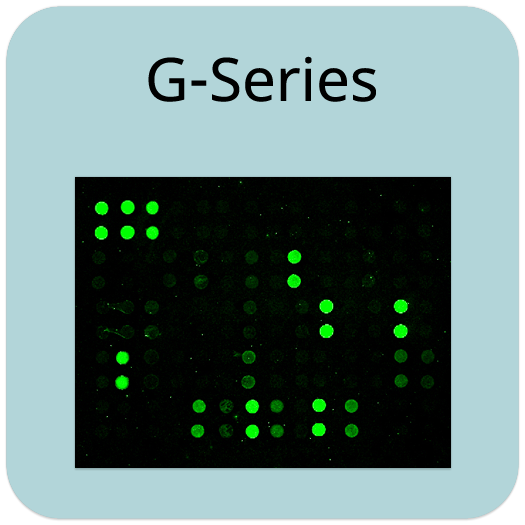 Human Cytokine Array G4000