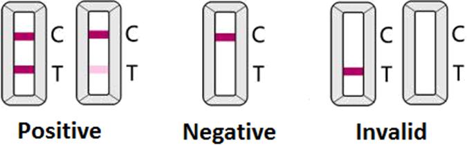 Coronavirus (COVID-19) IgM/IgG Rapid Test Kit