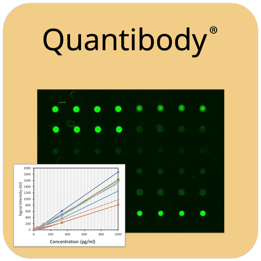 Quantibody Array
