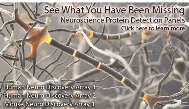 Learn more about our Neuroscience Arrays!