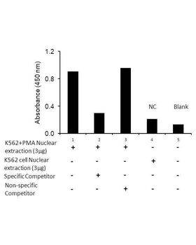 Transcription factor assay of c-Jun from nuclear extracts of K562 cells or K562 cells treated with PMA (50 ng/ml) for 3 hr with the specific competitor or non-specific competitor. The result shows specific binding of c-Jun to the conserved binding site detected by using the RayBio c-Jun TF Activity Assay Kit.