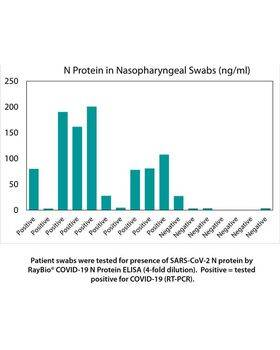 Patient swabs tested for presence of SARS-CoV-2 N protein by RayBio® COVID-19 N Protein ELISA.