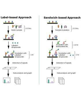 How It Works (label or sandwich-based)